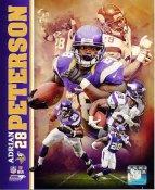 Adrian Peterson Minnesota Vikings SATIN 8X10 Photo