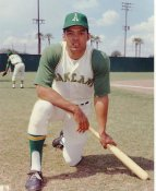 Reggie Jackson LIMITED STOCK Oakland Athletics 8X10 Photo