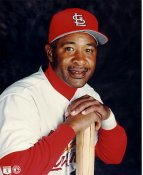 Ozzie Smith LIMITED STOCK St Louis Cardinals 8X10 Photo