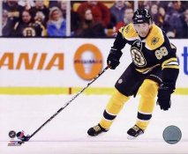 Jaromir Jagr Boston Bruins SATIN 8x10 Photo