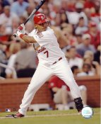 Ronnie Belliard LIMITED STOCK St. Louis Cardinals 8X10 Photo