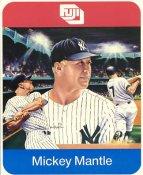 Mickey Mantle 1980'S Sports Impressions Stats & History on Back SUPER SALE Slight Corner Crease New York Yankees 8x10 Photo