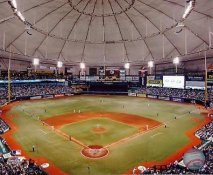 E3 Tropicana Field Tampa Bay Rays LIMITED STOCK 8X10 Photo