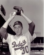 Billy Loes LIMITED STOCK Brooklyn Dodgers SATIN 8x10 Photo