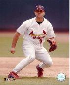 Albert Pujols SUPER SALE Slight Creases Cardinals 8X10 Photo