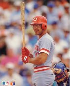 Chris Sabo LIMITED STOCK Cincinnati Reds Glossy Card Stock 8x10 Photo