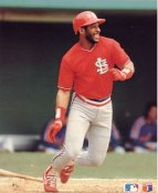 Ozzie Smith LIMITED STOCK St. Louis Cardinals Glossy Card Stock 8x10 Photo