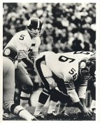 Terry Hanratty & Mike Mansfield SUPER SALE Pittsburgh Steelers 8x10 Photo