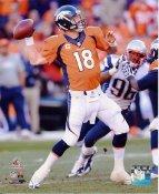 Peyton Manning 2013 AFC Champs Denver Broncos SATIN 8X10 Photo