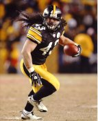 Troy Polamalu Pittsburgh Steelers 8x10 Photo