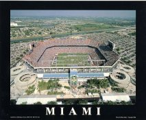 N2 Sun Life Stadium Miami Dolphins 8X10 Photo