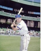Ron Santo LIMITED STOCK Chicago Cubs 8x10 Photo