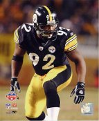 James Harrison SUPER SALE Pittsburgh Steelers Slight Corner Crease 8x10 Photo
