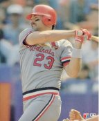 Tom Brunansky LIMITED STOCK St. Louis Cardinals Glossy Card Stock 8x10 Photo