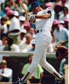 Ryne Sandberg LIMITED STOCK Chicago Cubs 8X10 Photo