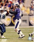 Elvis Grbac Baltimore Ravens LIMITED STOCK 8X10 Photo