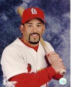 Fernando Vina St. Louis Cardinals LIMITED STOCK 8X10 Photos