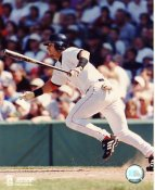Nomar Garciaparra Boston Red Sox LIMITED STOCK 8x10 Photo