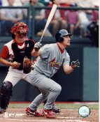 JD Drew  St. Louis Cardinals LIMITED STOCK 8x10 Photo